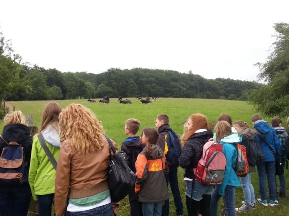 Exkursion zum Bauernhof mit einer 5. Klasse